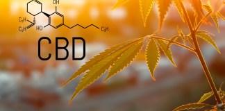 FDA-CBD-Hearing-KushCo-CBDToday