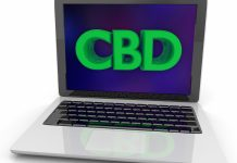 CBD Google searches-JAMA-study-cbdtoday