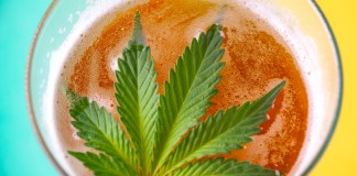 Infused Beverages-Market Report-CBD-CBDToday