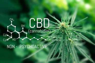 Cannabidoil - CBD