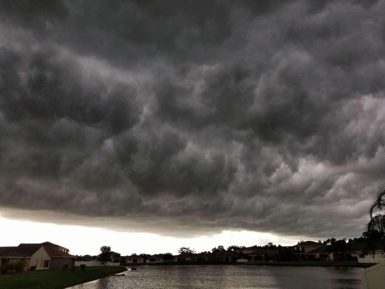 Kiwacz- Shelf Cloud