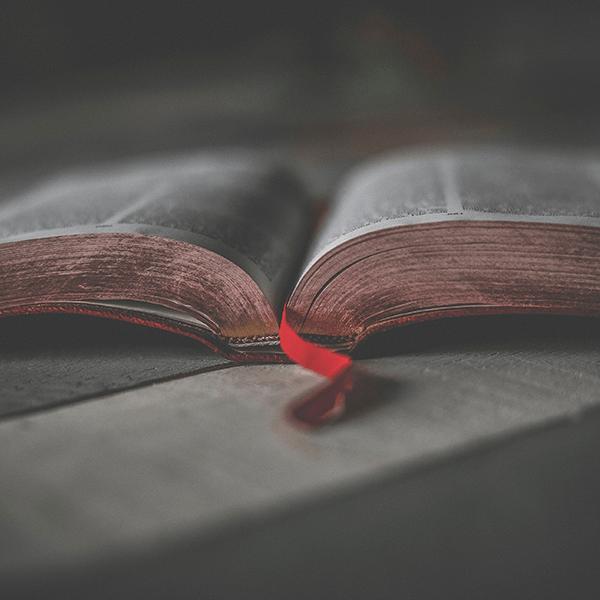 Photo of an open Bible