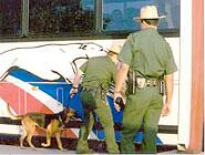 Border Patrol agents and a K-9 perform a transportation check on a bus