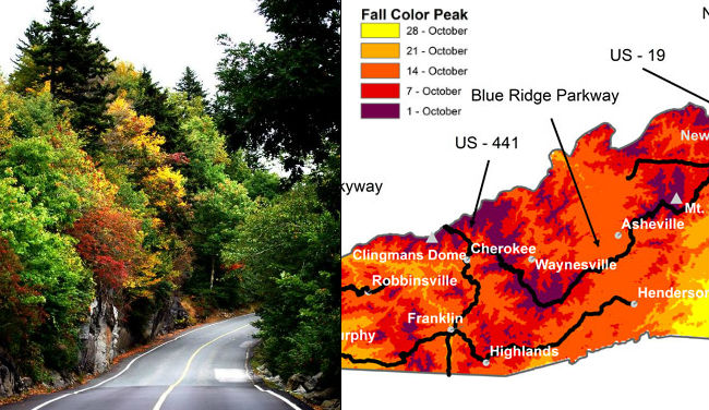 nc-fall-colors_264457
