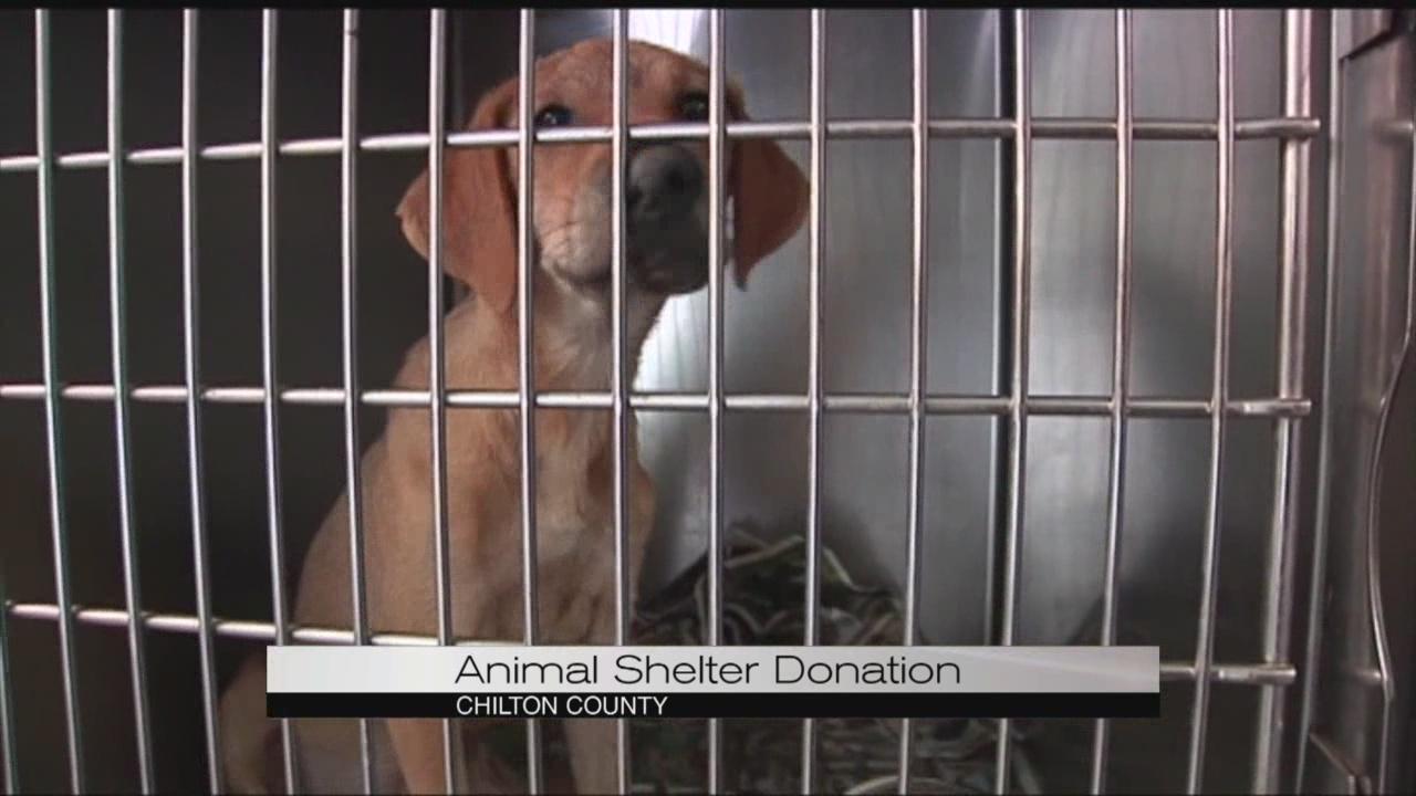 animal shelter_124291