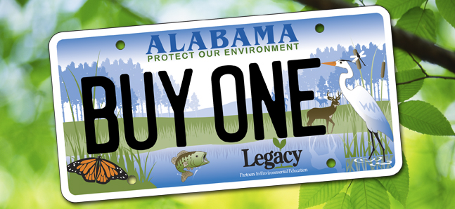 legacy alabama license plat supports alabama teachers donate_183347