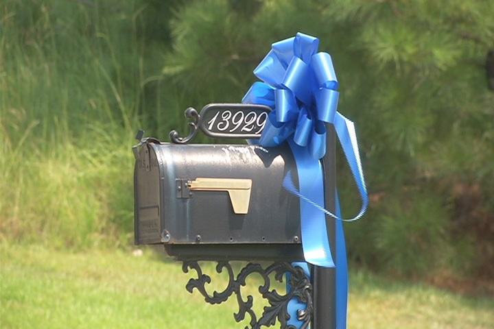 BLUE RIBBON COPS2_186339