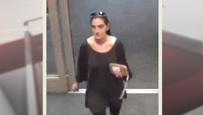 vehicle-burglary-suspect-target_202877