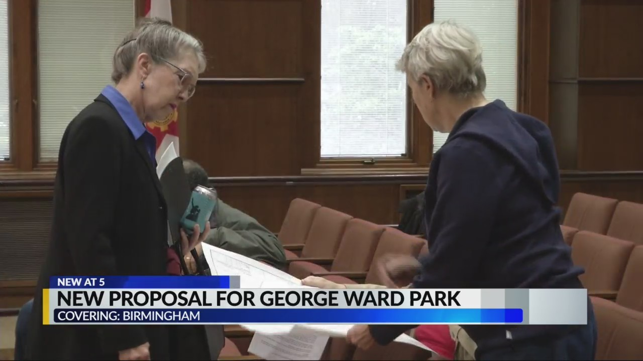 New proposal for George Ward Park
