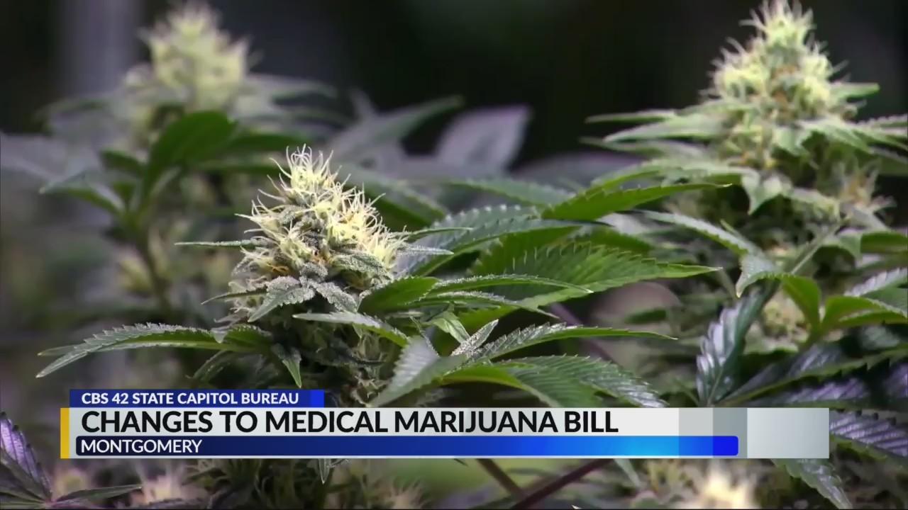 Changes_to_medical_marijuana_bill_0_20190528231310