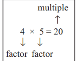 Factor and multiple