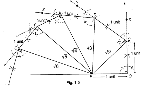 NCERT Class 9 Maths Lab Manual - Construct a Square Root Spiral 5
