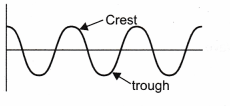 NCERT Class 9 Science Lab Manual - Velocity of a Pulse in Slinky 3
