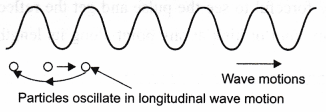 NCERT Class 9 Science Lab Manual - Velocity of a Pulse in Slinky 5