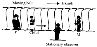 NCERT Solutions for Class 11 Physics Chapter 3 Motion in a Straight Line 30