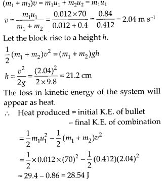 NCERT Solutions for Class 11 Physics Chapter 6 Work Energy and Power 20