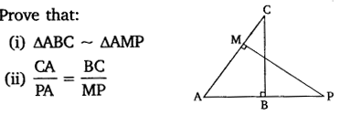 NCERT Solutions for Class 10 Maths Chapter 6 Triangles 38