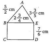 NCERT Solutions for Class 7 Maths Chapter 2 Fractions and Decimals 12