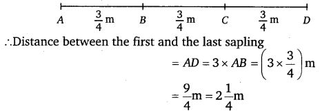 NCERT Solutions for Class 7 Maths Chapter 2 Fractions and Decimals 47
