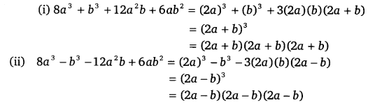NCERT Solutions for Class 9 Maths Chapter 2 Polynomials Ex 2.5.8