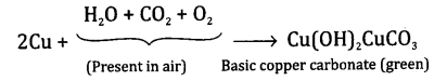 NCERT Solutions for Class 10 Science Chapter 3 Metals and Non-metals 6