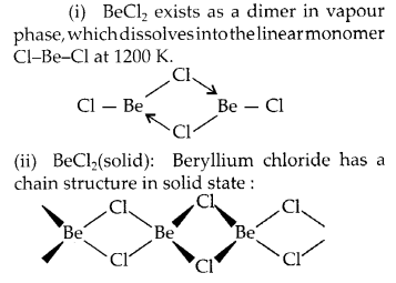 NCERT Solutions for Class 11 Chemistry Chapter 10 The s Block Elements 14
