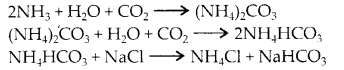 NCERT Solutions for Class 11 Chemistry Chapter 10 The s Block Elements 6