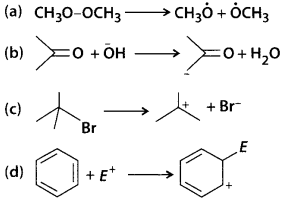 NCERT Solutions for Class 11 Chemistry Chapter 12 Organic Chemistry Some Basic Principles and Techniques 32