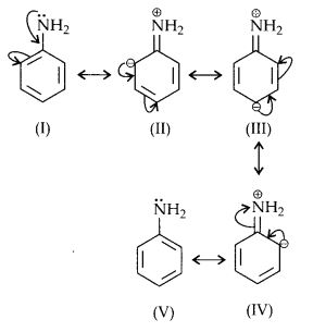 NCERT Solutions for Class 12 Chemistry Chapter 13 Amines 16