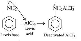 NCERT Solutions for Class 12 Chemistry Chapter 13 Amines 20