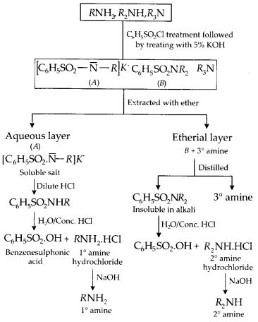 NCERT Solutions for Class 12 Chemistry Chapter 13 Amines 28