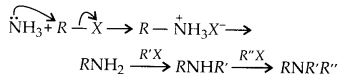 NCERT Solutions for Class 12 Chemistry Chapter 13 Amines 34