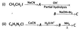 NCERT Solutions for Class 12 Chemistry Chapter 13 Amines 46