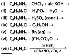 NCERT Solutions for Class 12 Chemistry Chapter 13 Amines 53