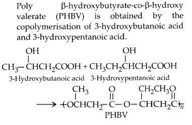 NCERT Solutions for Class 12 Chemistry Chapter 15 Polymers 16