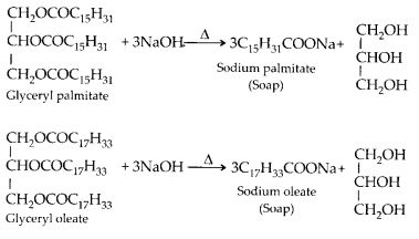 NCERT Solutions for Class 12 Chemistry Chapter 16 Chemistry in Every Day Life 1