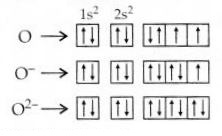 NCERT Solutions for Class 12 Chemistry Chapter 7 The p-Block Elements 29