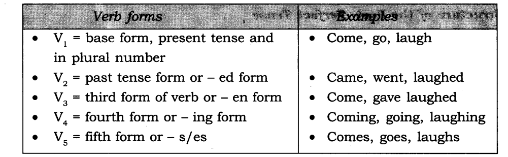 Tenses Exercises for Class 7 CBSE With Answers 12
