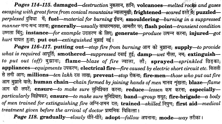 NCERT Solutions for Class 7 English Honeycomb Chapter 8 Fire - Friend and Foe