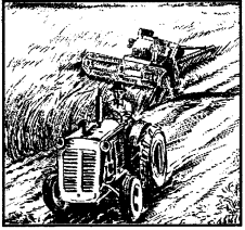 NCERT Solutions for Class 8 Social Science Geography 4 Agricultural 3