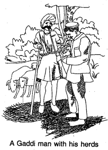 NCERT Solutions for Class 8 Social Science History Chapter 4 Tribals,dikus and the vision of a golden age 2
