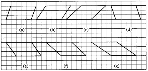 NCERT Solutions for Class 7 maths Integers chapter 7 img 49