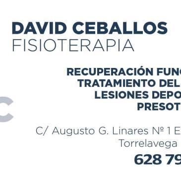 Fisioterapia David Ceballos – Sesiones de fisioterapia por 18€ a los abonados y jugadores del CBT Torrelavega