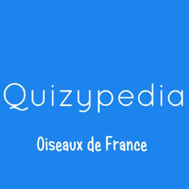 Quizz Oiseaux de France