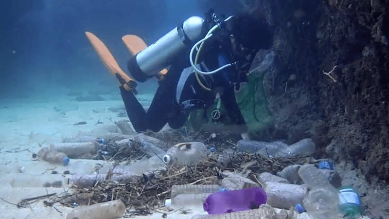 Plastic Garbage Patch Bigger Than Mexico Found in Pacific
