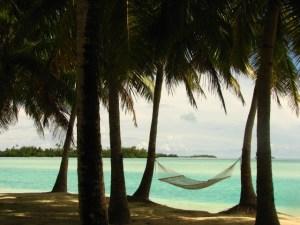 Hammock on a tropical island