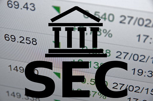 SEC Security Guidelines