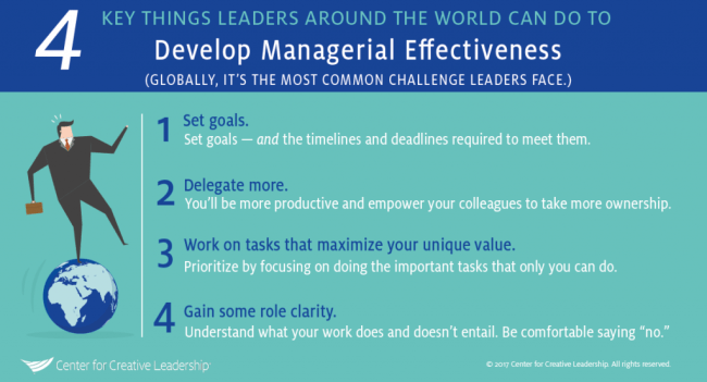 infographic-on-developing-managerial-effectiveness