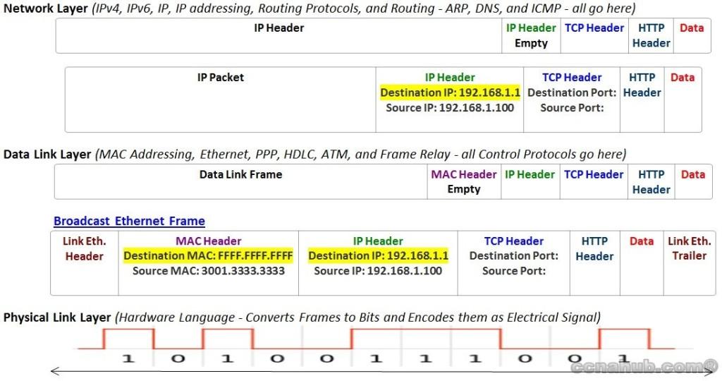 understanding arp broadcast message - Ethernet Frames