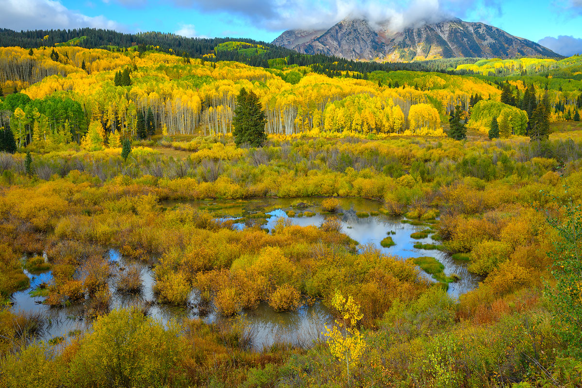 Fall Colors in Colorado 2021